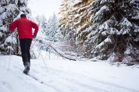 crosscountry: Cross-country skiing: young man cross-country skiing on a lovely sunny winter day Stock Photo