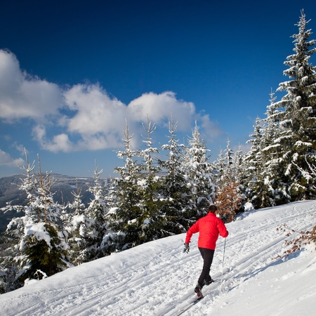 country lifestyle: Cross-country skiing: young man cross-country skiing on a lovely sunny winter day Stock Photo