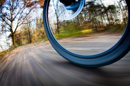 extreme angle: Bicycle riding in a city park on a lovely autumnfall day (motion blur is used to convey movement)