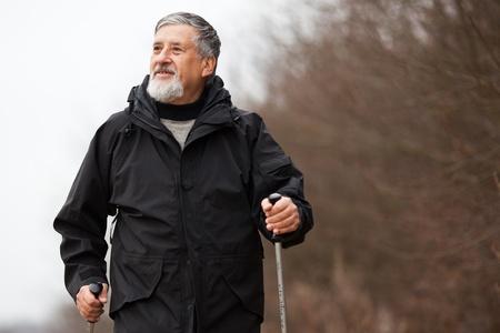 Senior man nordic walking Stock Photo - 12405558