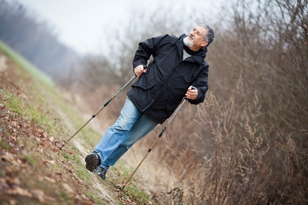 Senior man nordic walking Stock Photo - 12405785