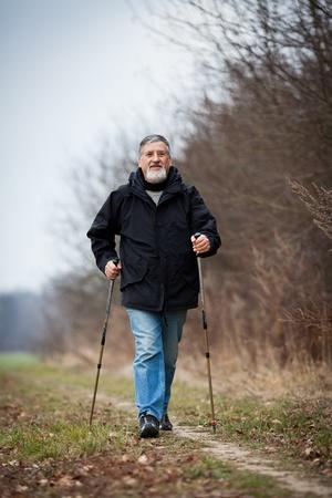 Senior man nordic walking Stock Photo - 12405720