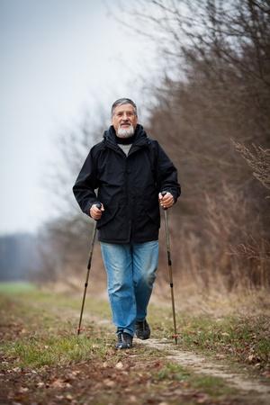 Senior man nordic walking Stock Photo - 12405693