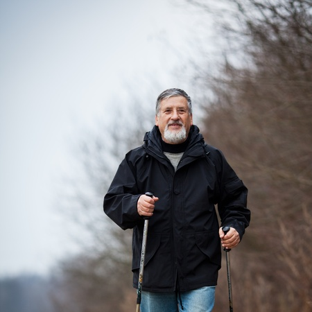 Senior man nordic walking Stock Photo - 12405446