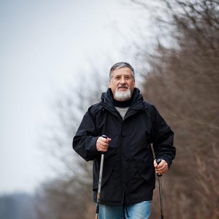 Senior man nordic walking Stock Photo - 12405446