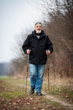 Senior man nordic walking Stock Photo - 12405698
