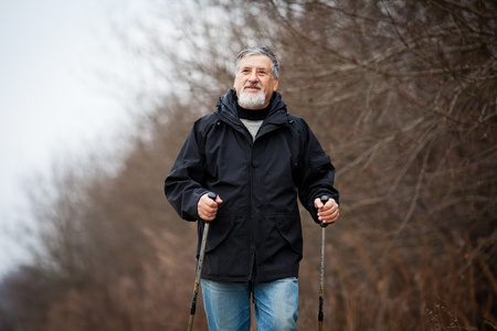 Senior man nordic walking Stock Photo - 12405685