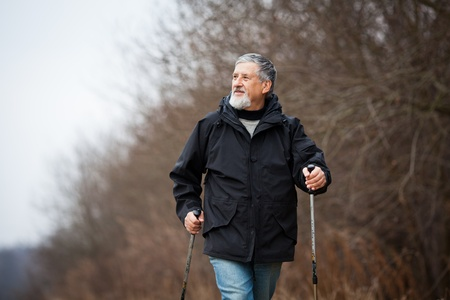 Senior man nordic walking Stock Photo - 12405603