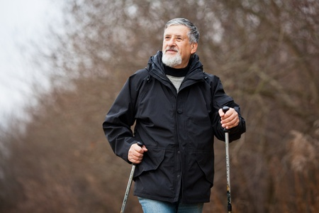 Senior man nordic walking Stock Photo - 12405609
