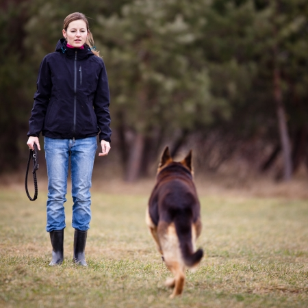 engedelmesség: Mester és az ő engedelmes (németjuhász) dog