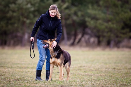 outdoor training: Master and her obedient (German shepherd) dog