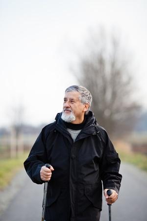 Senior man nordic walking Stock Photo - 12637477