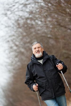 Senior man nordic walking Stock Photo - 12852253