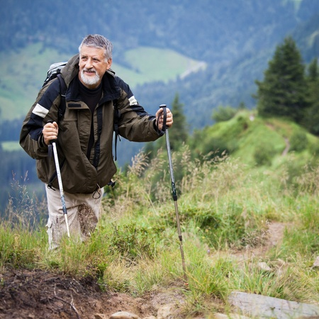 Active senior hiking in high mountains (Swiss Alps) Stock Photo - 12637666
