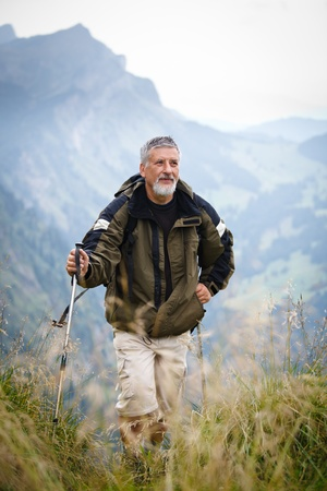 Active senior hiking in high mountains (Swiss Alps) Stock Photo - 12637870