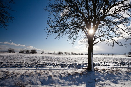 sunny cold days: Lovely winter landcape on a sunny winter day Stock Photo