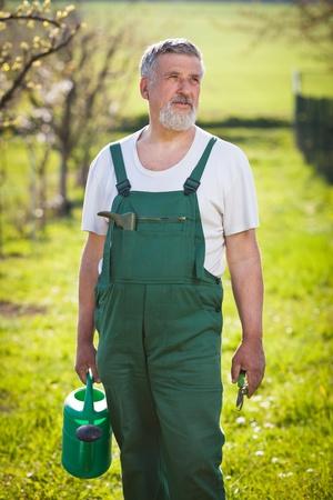 mattock: portrait of a senior gardener in his gardenorchard (color toned image)