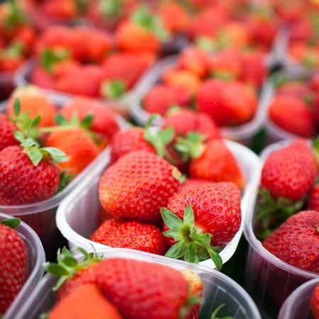 farmers market series - fresh strawberries photo