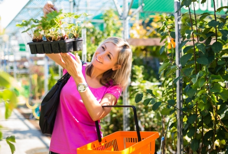Young woman buying flowers at a garden center Stock Photo - 17038558