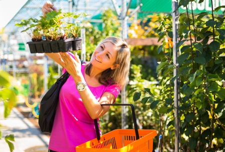 young plant: Young woman buying flowers at a garden center