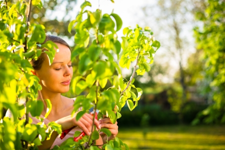 Pretty female gardener taking care of her lovely garden on a lovely spring day - cutting branches, double digging loosening the soil with a spade photo