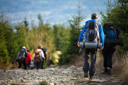 camping: People hiking - goiing down a lovely alpine path