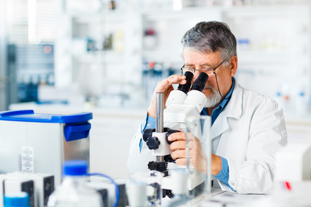chromatograph: senior male researcher carrying out scientific research in a lab using a microscope Stock Photo