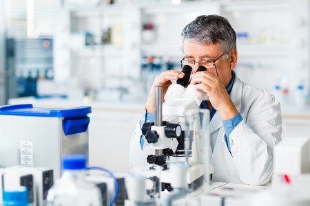 senior male researcher carrying out scientific research in a lab using a microscope  Imagens
