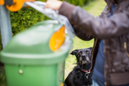 Do not let your dog foul! - Young woman grabbing a plastic bag in a park to tidy up after her dog later Stock Photo