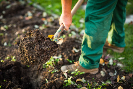 Gardening - man digging the garden soil with a spud (shallow DOF; selective focus) Stock Photo