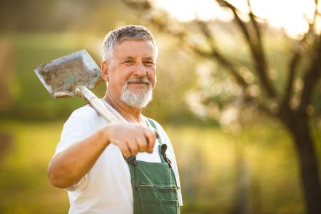 Porträt einer schönen älteren Mannes im Garten in seinem Garten, auf einem schönen Frühlingstag (Farbe getönt Bild)