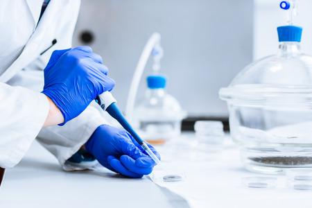 laboratorio: Investigador senior masculina llevar a cabo la investigación científica en un laboratorio
