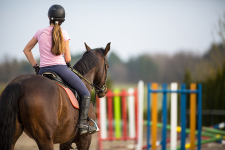 horses in field: Young woman show jumping with horse Stock Photo