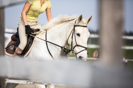 woman tied: Young woman show jumping with horse Stock Photo