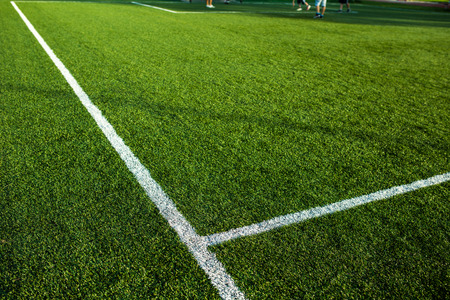pitch: Soccery pitch - well cut grass of a soccer field