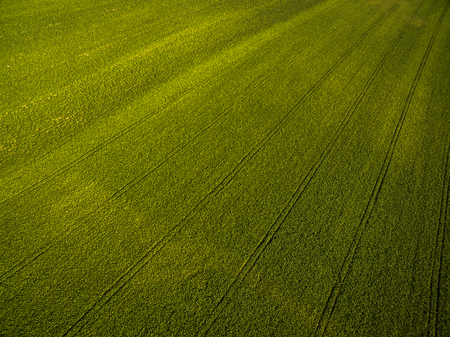 a crop: Farmland from above - aerial image of a lush green filed Stock Photo