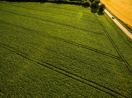 Farmland from above - aerial image of a lush green filed and a small country road with a car