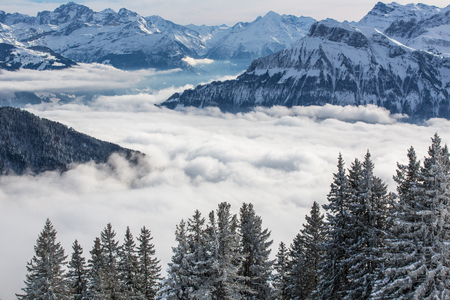 mountain scene: Splendid winter alpine scenery with high mountains and trees covered with snow, clouds hanging low in the valley Stock Photo