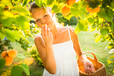 lit image: Pretty, young woman picking apricots lit by warm summer evening light (shallow DOF; color toned image)
