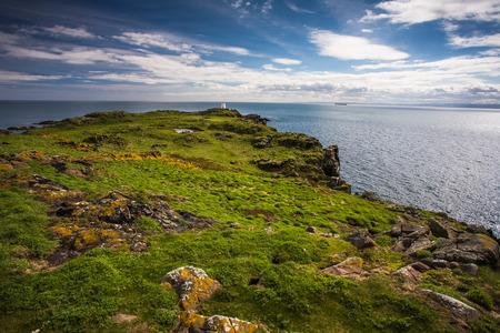 puffins: Isle of May, Scotland Stock Photo