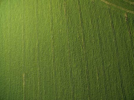 -空中上の画像から下に緑豊かな緑の農地 写真素材