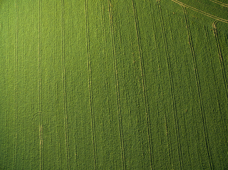 field crop: Farmland from above - aerial image of a lush green filed Stock Photo