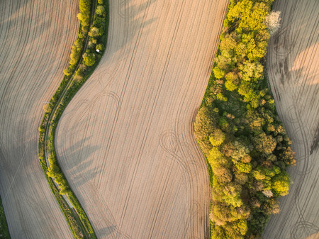 Farmland from above - aerial image of a lush green filed 写真素材