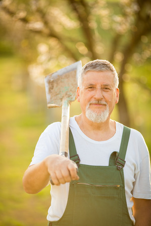 dibble: Portrait of a handsome senior man gardening in his garden, on a lovely spring day (color toned image)