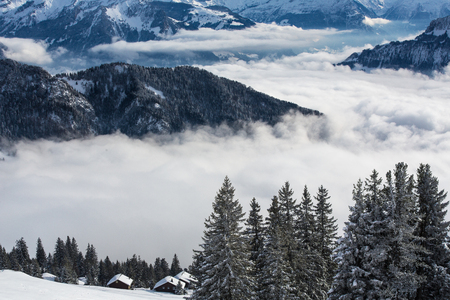 Splendid winter alpine scenery with high mountains and trees covered with snow, clouds hanging low in the valley Stock Photo