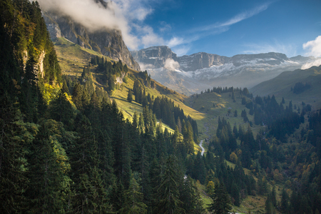 Lovely alpine scenery with beautiful forest,  high mountains and deep valley Imagens - 72491934