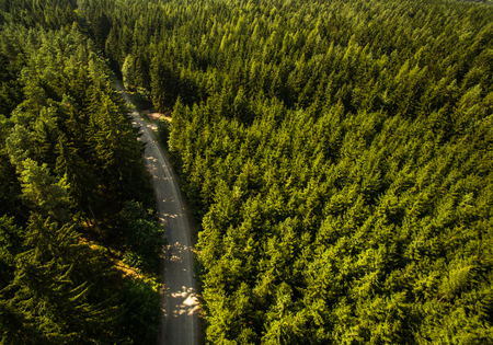 Aerial view of vast forests Stock Photo