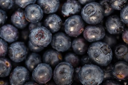 Fresh, ripe blueberries Stock Photo
