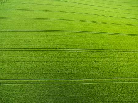 上から農地 - 緑豊かな緑の航空写真を提出 写真素材