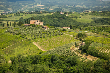 Siena in Tuscany, Italy Stok Fotoğraf